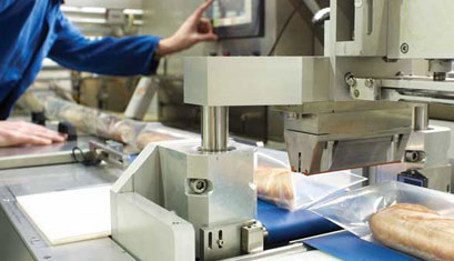 Ultrasound Technique in Food Processing