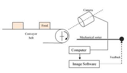 Colour Sorting Using Machine Vision: Viewing Food from the Eyes of a Machine