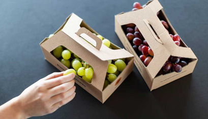 Innovative Packaging;  Giving Fruit and vegeable an extended shelf life