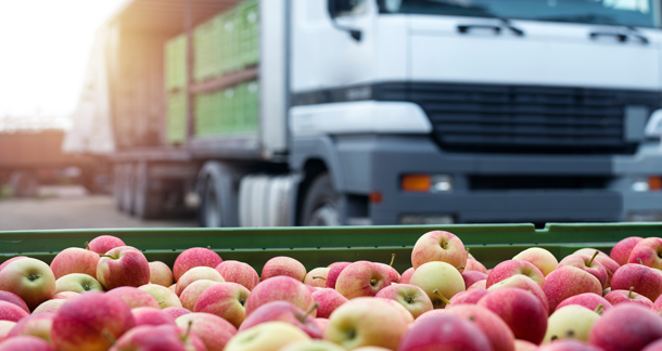 Cold Chain and Logistics of Food Products