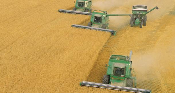 India's agricultural export scenarios